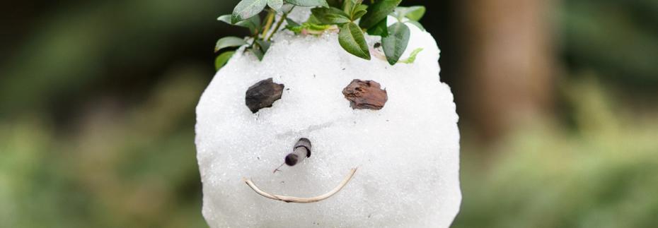 Schneemann mit Blättern geschmückt